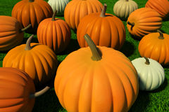 Pumpkins in the grass. Colorful pumpkins on grass, realistic rendered illustration Stock Photo