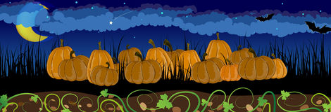 Pumpkins in the grass Royalty Free Stock Photography