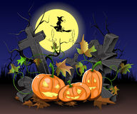 Pumpkins for Halloween. Illustration of three pumpkins on the cemetery at Halloween Royalty Free Stock Image