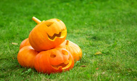 Pumpkins for halloween on green grass background Royalty Free Stock Image