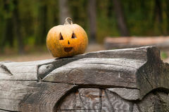 Pumpkins for Halloween is on a log Stock Photo