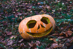 Pumpkins for Halloween Royalty Free Stock Images