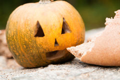 Pumpkins for Halloween  near the bread Royalty Free Stock Photo