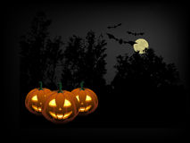 Pumpkins in the Halloween night Royalty Free Stock Photos