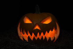 Pumpkins for Halloween Royalty Free Stock Image