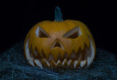Pumpkins for Halloween Royalty Free Stock Photography