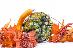 Pumpkins. Halloween Royalty Free Stock Photo