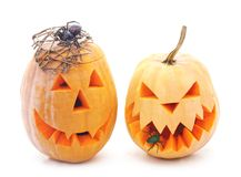 Pumpkins for Halloween. Pumpkins for Halloween on a white background Royalty Free Stock Image