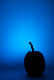 Pumpkins on Halloween, silhouette on a blue background. Royalty Free Stock Image