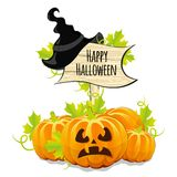 Pumpkins for Halloween and wooden signboard Stock Photos