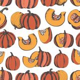Pumpkins. Hand drawing. Vector seamless pattern for design and decoration Royalty Free Stock Image