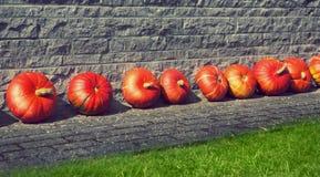 Pumpkins, harvest topic Stock Photo
