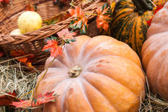 Pumpkins, hay and apples Royalty Free Stock Photos