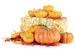 Pumpkins and Hay Bale royalty free stock photography