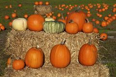 Pumpkins on a hay bale Royalty Free Stock Images