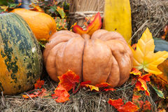 Pumpkins on hay Stock Photo