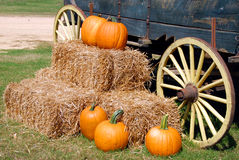 Pumpkins on hay stack Stock Photos