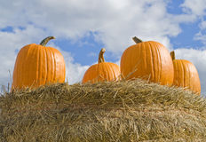 Pumpkins on a Hay Stack Stock Images