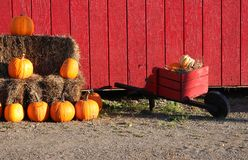 Pumpkins and hay with wheelbarrow Royalty Free Stock Images