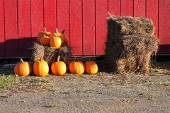 Pumpkins and haybales outdoors Stock Photography