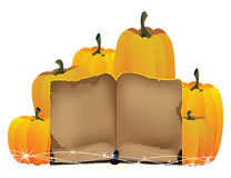 Pumpkins heap and the old book Stock Photography
