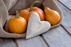 Pumpkins_heart_copy_space01 Stock Image