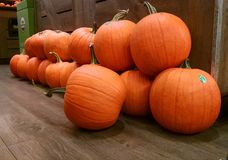 The pumpkins are here! Royalty Free Stock Photos