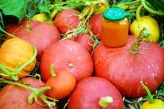 Pumpkins. Hokkaido pumpkins and jar of fresh pumpkin jam Royalty Free Stock Photography