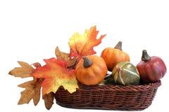 Free Pumpkins In Basket Royalty Free Stock Images - 3147899