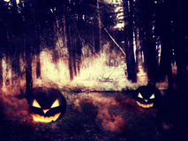 Pumpkins In The Night Forest Stock Images