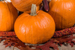 Pumpkins indian corn and fall leaves. Pumpkins fall leaves and decorative corn Royalty Free Stock Photo
