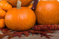 Pumpkins indian corn and fall leaves Royalty Free Stock Image