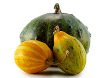 Pumpkins isolated over white background Stock Photo