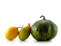 Pumpkins isolated over white background Stock Photography