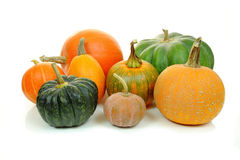 Pumpkins isolated Royalty Free Stock Images