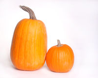 Pumpkins isolated on white. Horizontal image of 2 pumpkins isolated against a white background with ample copy space Stock Photo