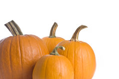 Pumpkins Isolated on White Royalty Free Stock Photography