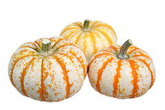 Pumpkins isolated on white background. Three colorful pumpkins isolated on white background Royalty Free Stock Photography