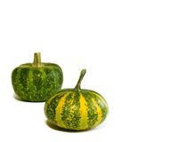 Pumpkins isolated on white background Royalty Free Stock Images