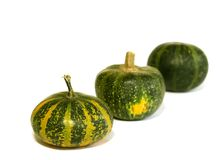 Pumpkins isolated on white background Royalty Free Stock Photos