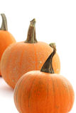 Pumpkins isolated Stock Images