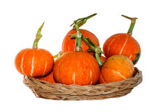 Pumpkins isolated on white background with clipping p Royalty Free Stock Photo
