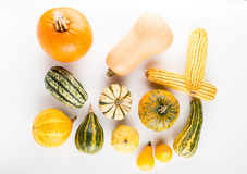 Pumpkins isolated on white background. Fresh pumpkins isolated on white background Royalty Free Stock Images