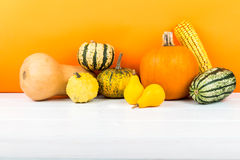 Pumpkins isolated on white wooden table and orange background. Fresh pumpkins isolated on white wooden table and orange background Stock Photos