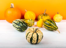 Pumpkins isolated on white wooden table and orange background. Fresh pumpkins isolated on white wooden table and orange background Stock Photography