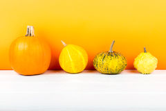 Pumpkins isolated on white wooden table and orange background Stock Image