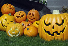 Pumpkins and jack-o-lanterns Stock Photography