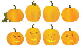 Pumpkins and Jack O Lanterns Royalty Free Stock Photo