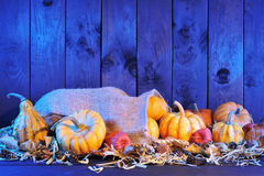 Pumpkins jute bag Royalty Free Stock Photos