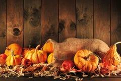 Pumpkins jute bag Royalty Free Stock Image